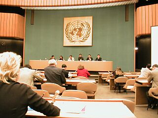 Giving Speech at the UN